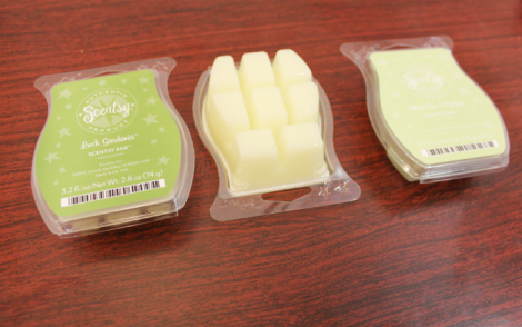 Lush Gardenia and White Tea & Cactus Scentsy Bars